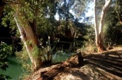 Jordan river, Yardenit, Yarden