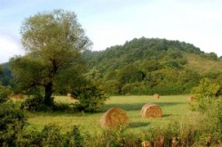 Landscapes of Cserehát